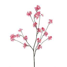 Appel bloesem Roze H126