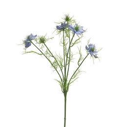 Nigella damascena tak Blauw H66