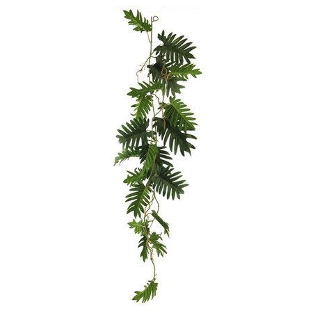 Philodendron Guirlande Groen H105