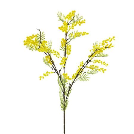 Mimosa Tak Geel H100