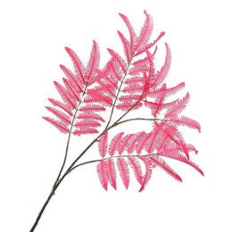 Fern Branch (SILK-KA)