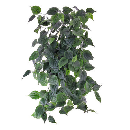 Philodendron hanging plant (Fire resistant)