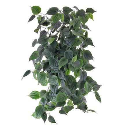 Philodendron hangplant (Brandvertragend)