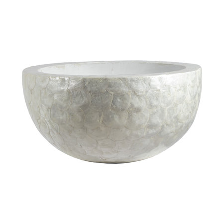 Bowl Capiz