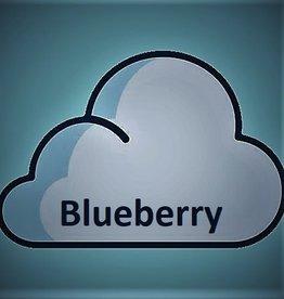 E-Gusto Blueberry