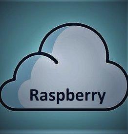 E-Gusto Raspberry