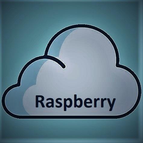 E-Gusto E-Gusto, Raspberry