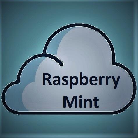 Liquida Liquida, Raspberry Mint