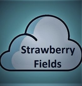 American Stars American Stars - Strawberry Fields Forever