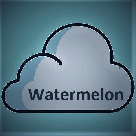 Flavor Ink Flavor Ink Aroma Watermelon