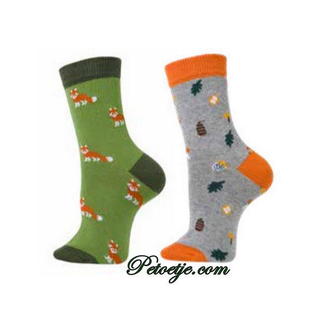 CARLOMAGNO - Socks Green & Grey Fantasy Cotton Socks - 2 Pack