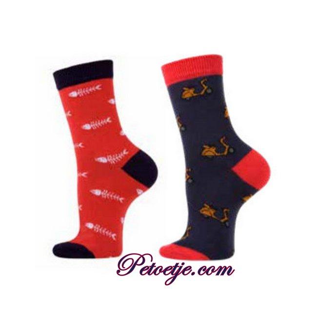 CARLOMAGNO - Socks Red & Blue Fantasy Cotton Socks