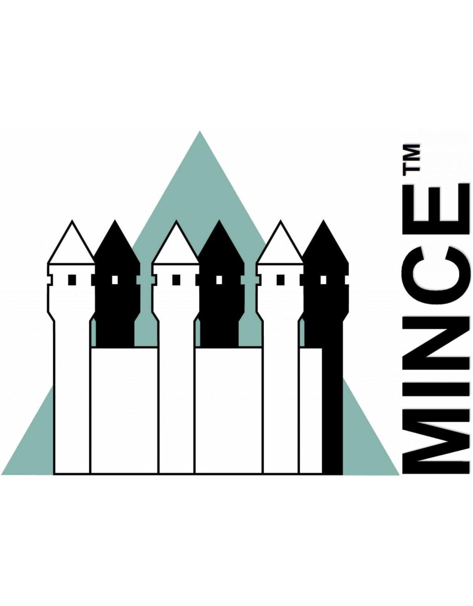 MINCE - A Framework for Organizational Maturity