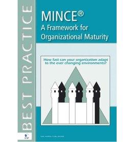 MINCE maturity model