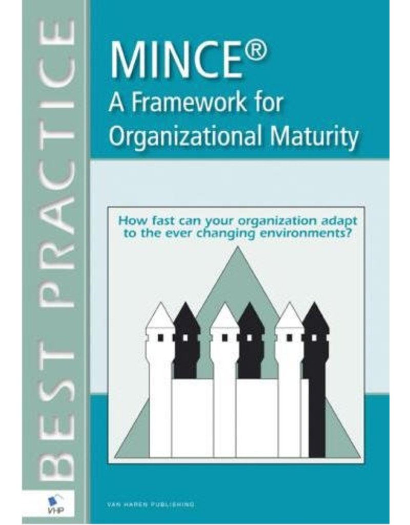 MINCE - A Framework for Organizational Maturity