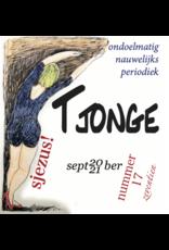 Tjonge-17 - ondoelmatig nauwelijks periodiek