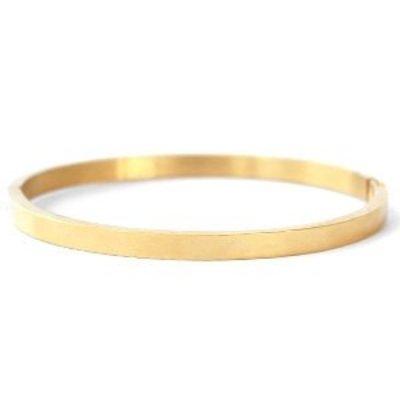 RVS armband goudkleur (p/st)
