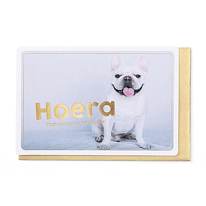 Enfant Terrible Enfant Terrible card  + envelope 'communie bulldog'