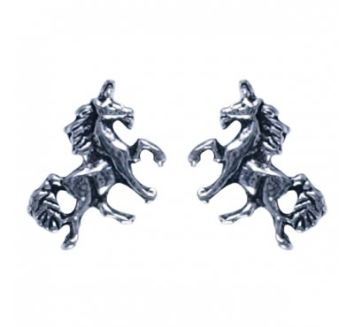Treasure Silver earrings unicorn