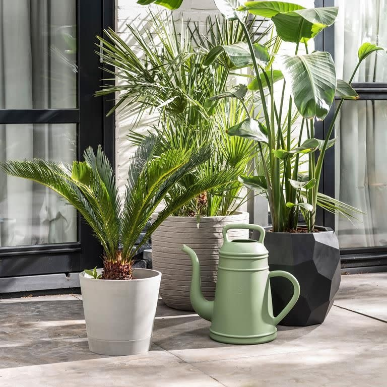 Xala Lungo watering can 12 L. old green