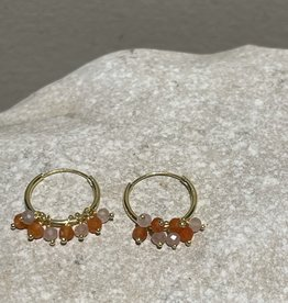 Katwalk Silver Silver earrings gold plated - stones