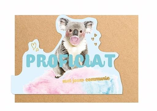 Enfant Terrible Enfant Terrible card  + enveloppe 'communie koala'