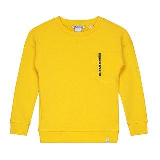Gele sweater Regan