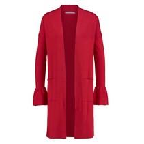 Rood vest New Robin