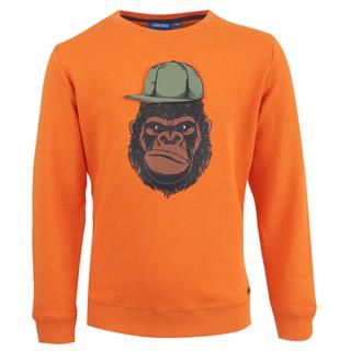 Oranje trui Kong