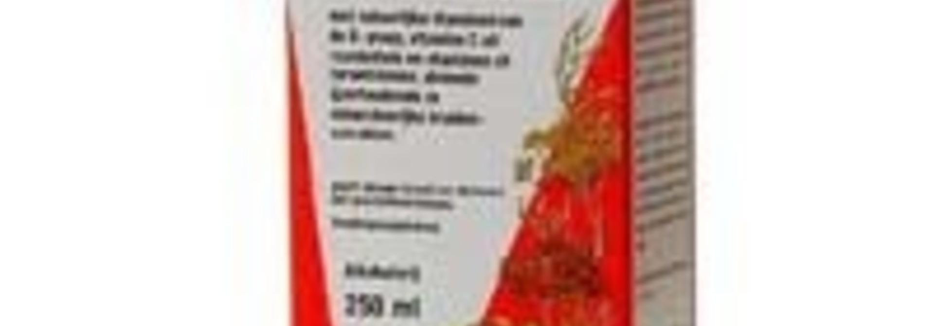 Floradix Tabletten 84 tabletten