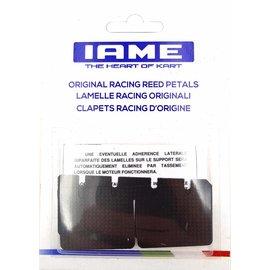 IAME S.p.A. Nr. 173 - Membransatz 0.24/0.25