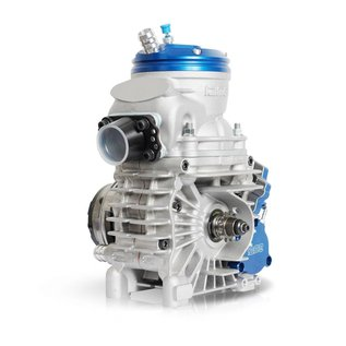 IAME S.p.A. Motor IAME Reedster V OKJ