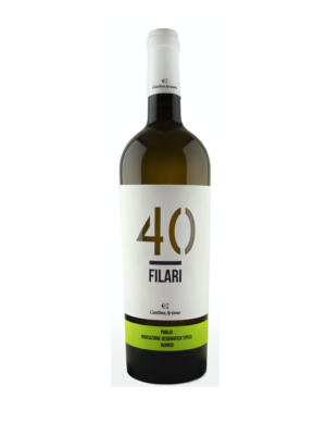 40 Filari bianco - Cantina Ariano 2019