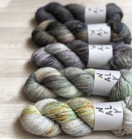 WALK collection FIVE SKEIN FADE - MINERAL MAGIC