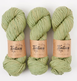 Tíntica MERINO WORSTED - OLIVE