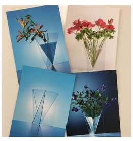 Bathroom Mania delta vase card set