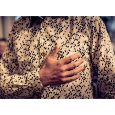 Zonen09 - Theo - patroon voor jongenshemd