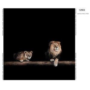 Tricotpaneel - Leeuw