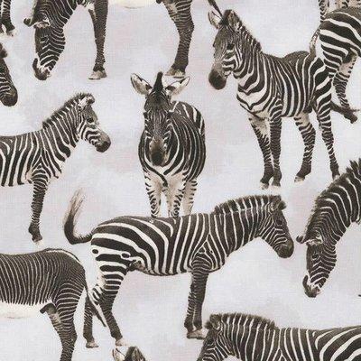 Timeless Treasures Wild - Zebra's  - katoen