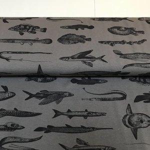 Mies & Moos - Tricot - strange fish