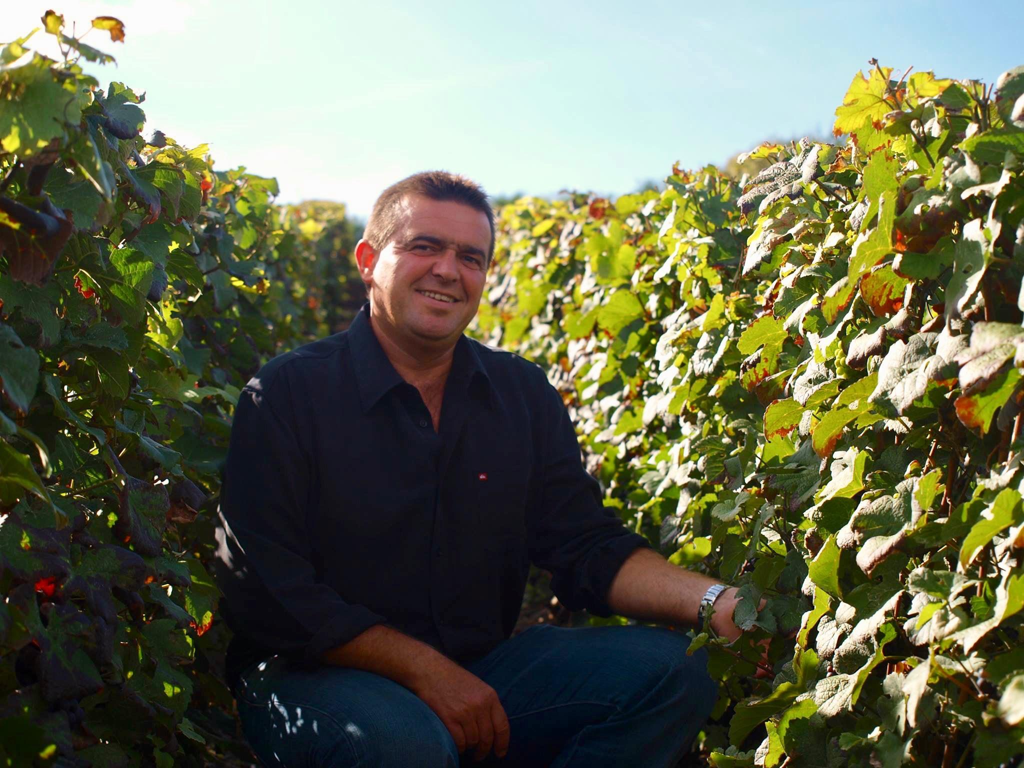 Winegrower Info