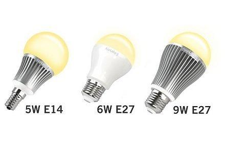 Single Bulbs