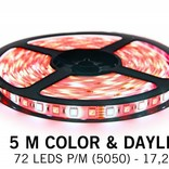 RGBW LED strip color + cold white - 5 M - 72 LED's P/M - 12V