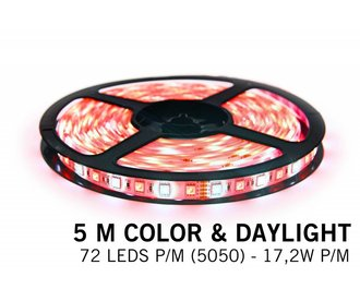 RGBW LED strip color + daylight 5M - 72 LED's P/M - 12V