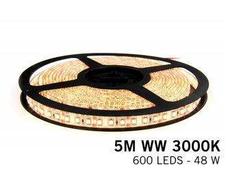 AppLamp Warm White LED strip 600 leds 72W 12V 5M