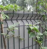 fensonet FENSONET 300gr GREEN 150cm L50m