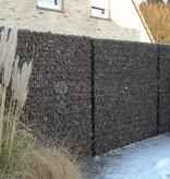 fensofill FENSOFILL Panel  L:2m  H:186cm  RAL7016