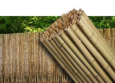 bambou fence