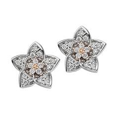Artikel mit Schlagwort Diamant Ohrstecker Blüte