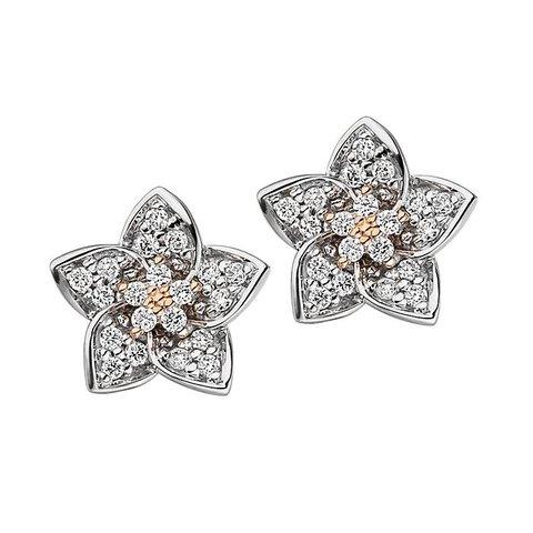 Diamant Ohrstecker Blüte Weißgold/Rotgold 585